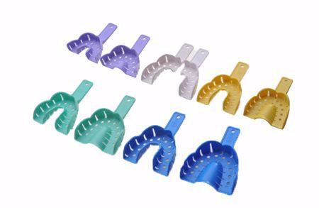 分類圖片 牙托